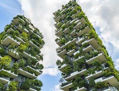 Hur kan byggbranschen minska sina CO2-utsläpp?